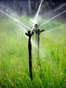 Automatización de riego por cobertura
