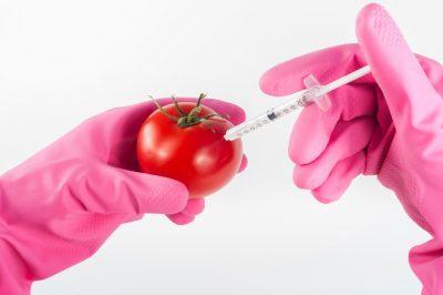 Agricultura_genetica_biogenetica