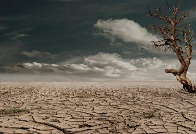 Erosion_desertificacion